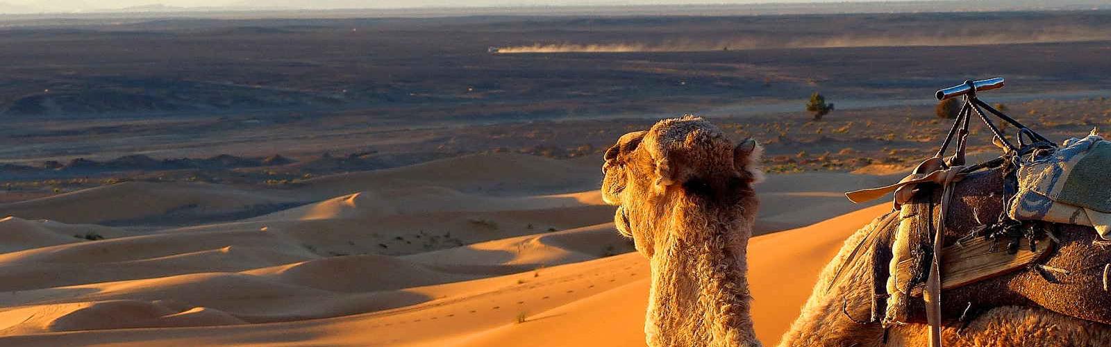 viagens em marrocos tours deserto marrocos
